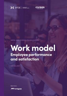 Work model. Employee performance and satisfaction